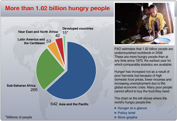 FAO- Hungerstatistik 2009
